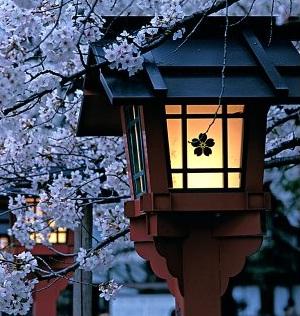 Historia Cultural del Japón: Una Perspectiva